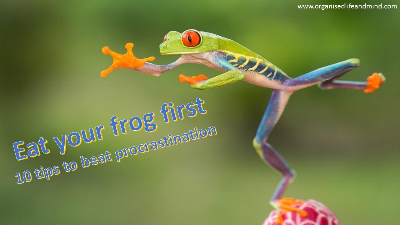 Frog procrastination