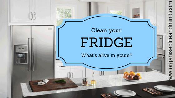 Clean your fridge