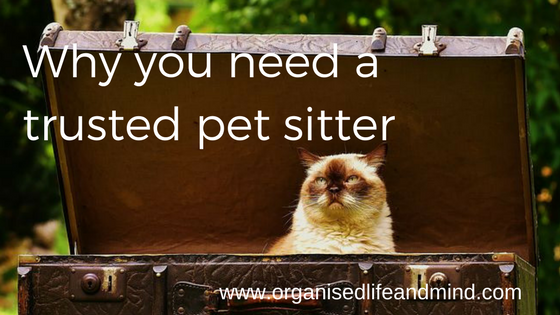 Why you need a trusted pet sitter
