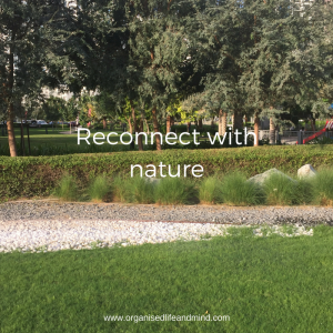 Reconnect with nature walk