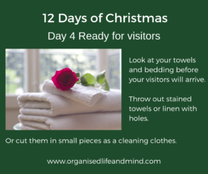 12 Days of Christmas Day 5 Visitors