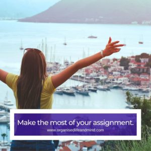 Make the most expat assignment