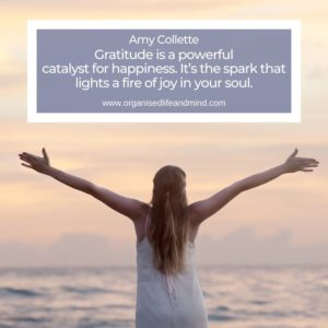 Saturday Quote Amy Collette