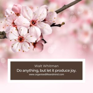Do anything, but let it produce joy.